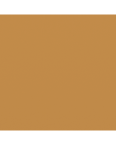 Interpon 200 - BEIGE Z170 - Smooth Matt UZ884I