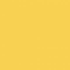 Interpon 700 - RAL 1018 - Lisse Brillance EE618G