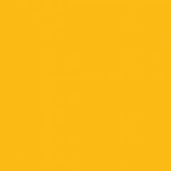 Interpon 700 - RAL 1023 - Lisse Brillance EE623G