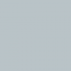 Interpon ACE Primer Plus - Caterpillar Dawn Grey - Smooth Satin EL19HI