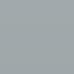 Interpon A2220 - Grey Primer (CEP9045) - Lisse Brillance EL568G