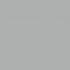 Interpon 700 AS - Silver - Metallic Gloss F3002I