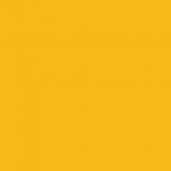 Interpon 700 HR - RAL 1023 - Lisse Brillance FE623F