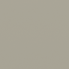 Interpon Redox APA - Grey - Smooth Satin FL151F