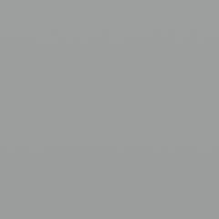 Interpon 610 - Silver - Metallic Gloss MW000GF