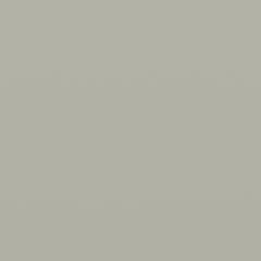 Interpon 620 - Grey - Smooth Gloss OL001GF