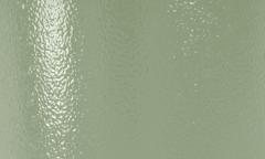 Interpon 610 Low-E - RAL 6021 - Grain cuir Brillance NKB21I