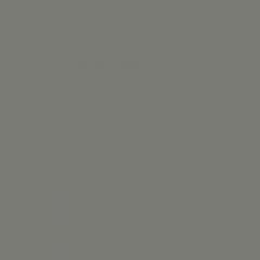 Interpon D1036 Textura - RAL 9007 - Fine Texture S2307G