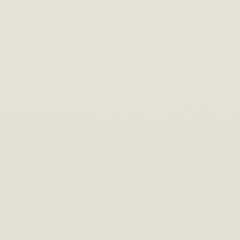 Interpon D1036 - HOLLANDS WIT 9010 - Smooth Gloss SA021E