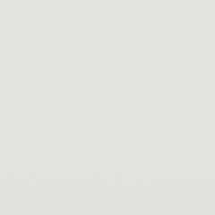 Interpon D1036 - White A910 - Gładki Satyna SA110JR