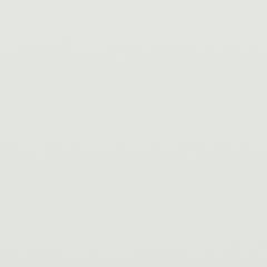 Interpon D1036 - White - Hipca (9910) - Gładki Połysk SA570E