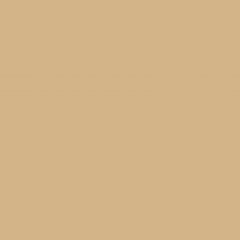 Interpon D1036 Textura - RAL 1001 - Fine Texture SD301G