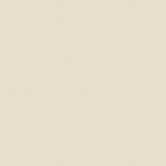 Interpon D1036 Textura - RAL 1013 - Textura fina  SD313G