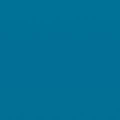 Interpon D1036 - BS 18E53 - Lisse Brillance SJ053E
