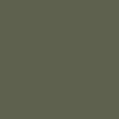 Interpon D1036 Textura - RAL 6003 - Textura fina  SK303G