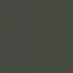 Interpon D1036 Textura - RAL 6007 - Texture fin  SK307G