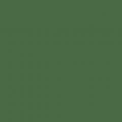 Interpon D1036 - RAL 6002 - Smooth Gloss SKJ02G