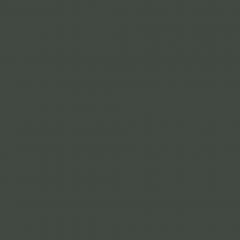 Interpon D1036 - RAL 6009 - Lisse Brillance SKJ09G
