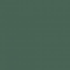 Interpon D1036 - RAL 6028 - Lisse Brillance SKJ28G