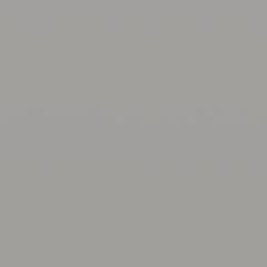 Interpon D1036 - BS 00A05 - Lisse Mate SL250E