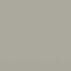Interpon D1036 - BS 10A05 - Smooth Matt SL288E