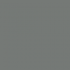 Interpon D1036 Textura - RAL 7005 - Drobna struktura  SL305G