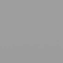 Interpon D1036 - BS 00A05 - Smooth Satin SLS50E