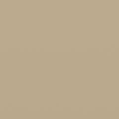 Interpon D1036 - NCS 2010 Y20R BEIGE 1C - Smooth Gloss SMJ1CG