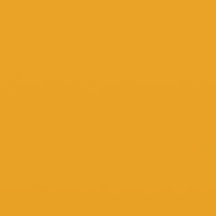 Interpon ACE 2010 - Yellow 257 - Smooth Gloss YE051F