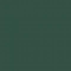 Interpon D2525 Structura - RAL 6009 - Fine Texture YK309F