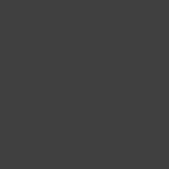 Interpon ACE 2010 - Caterpillar Black - Smooth Satin YN106G