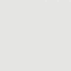 Interpon D1036 - White - Smooth Gloss SA018E