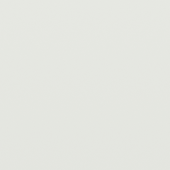 Interpon D1036 - White - Smooth Gloss SA698L