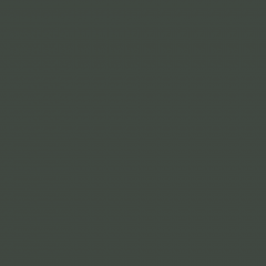 Interpon D1036 Textura - RAL 6009 - Fine Texture SK309G