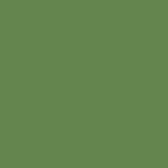 Interpon D1036 Textura - RAL 6017 - Fine Texture SK317G