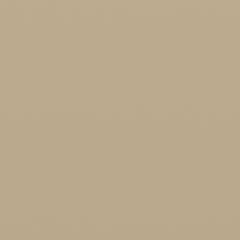 Interpon D1036 - NCS 2010 Y20R BEIGE 1C - Smooth Gloss SMJ1CG