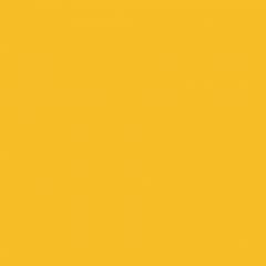 Interpon ACE 2010 - Caterpillar Yellow - Smooth Gloss YE006I